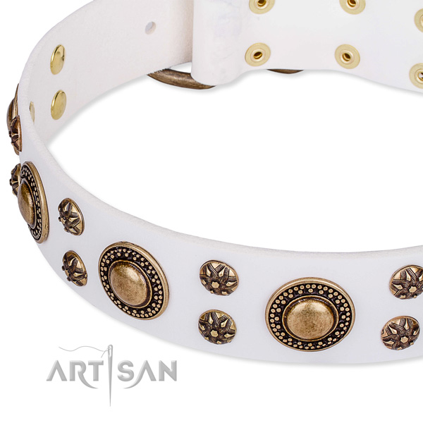 Leather dog collar with extraordinary embellishments