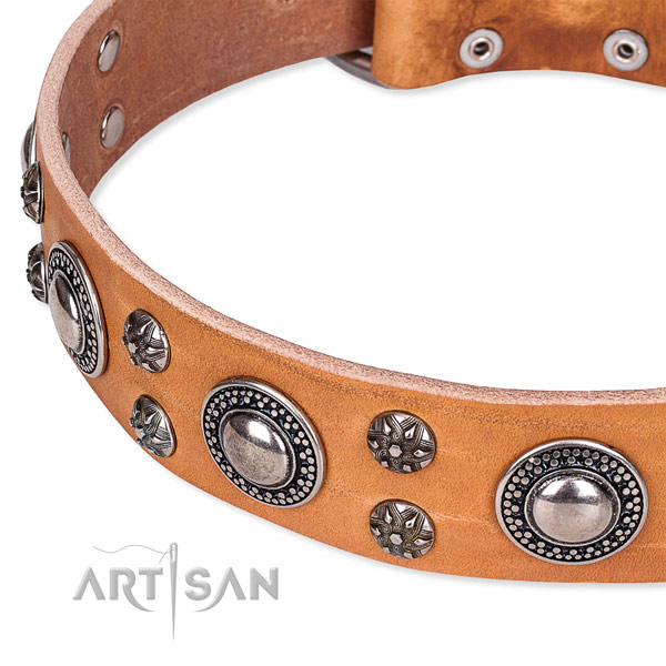 Daily use natural genuine leather collar with corrosion proof buckle and D-ring