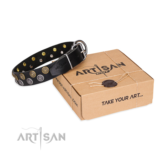 Natural genuine leather dog collar with studs for  everyday walking