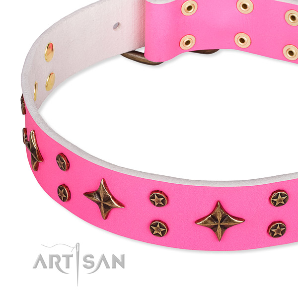 Full grain natural leather dog collar with unusual studs