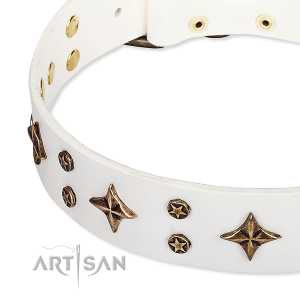 Full grain genuine leather dog collar with exquisite adornments