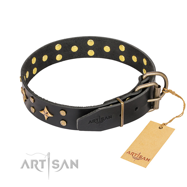 Daily walking genuine leather collar with adornments for your doggie