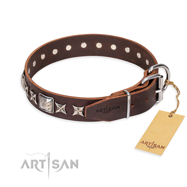 Stylish walking full grain leather collar with adornments for your doggie