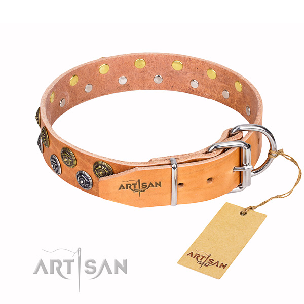 Daily walking full grain leather collar with decorations for your doggie