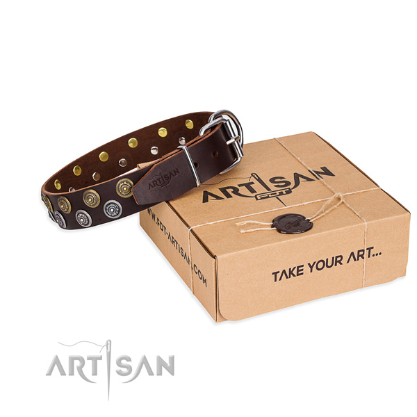 Genuine leather dog collar with embellishments for everyday use