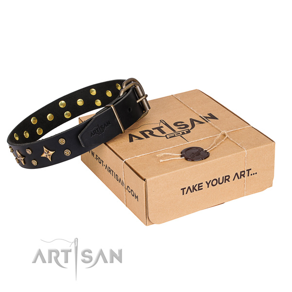 Studded full grain genuine leather dog collar for daily use