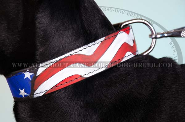Large breed dogs leather collar with painting
