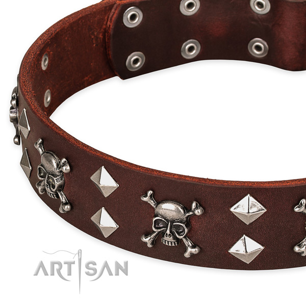 High quality leather dog collar for fail-safe use