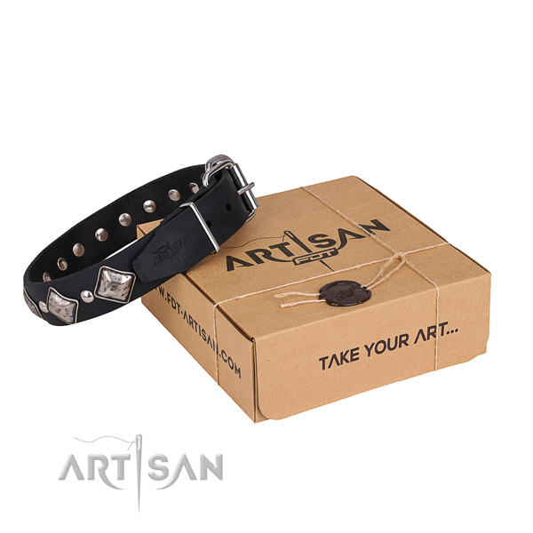 Daily leather dog collar with cute adornments
