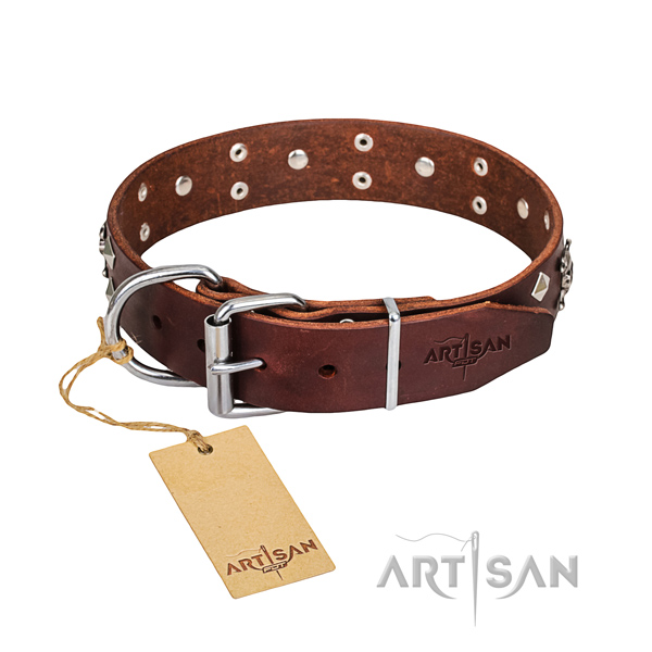 Resistant leather dog collar with riveted fittings