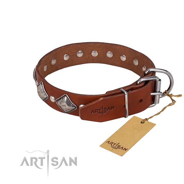 Genuine leather dog collar with thoroughly polished surface