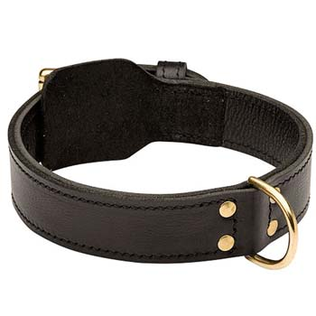 Superior leather dog collar for work and walk