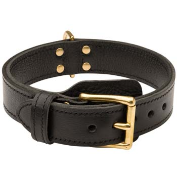 Most demandable leather dog collar
