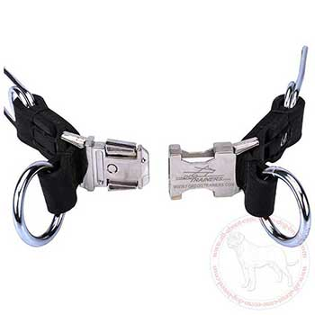 Quick release buckle of Cane Corso pinch collar