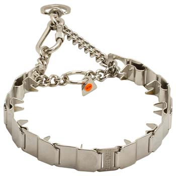 Cane Corso Stainless Steel Prong Collar for Obedience Training
