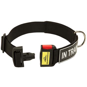 Adjustable Dog Collar with Quick release buckleg