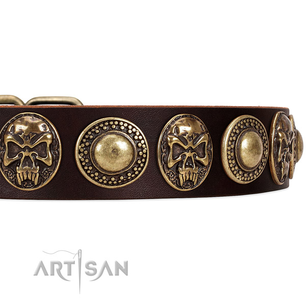 Full grain genuine leather dog collar with studs for everyday use