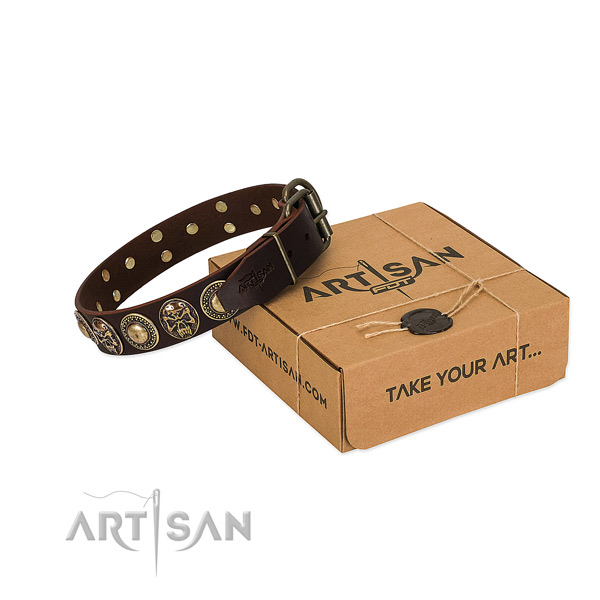 Studded full grain leather dog collar for daily use