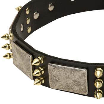 Big Dogs War Collar with Plates and Brass Spikes