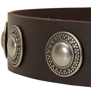 Circles decoration leather collar
