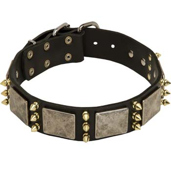 Vintage Cane Corso Spiked Dog Collar with Plates