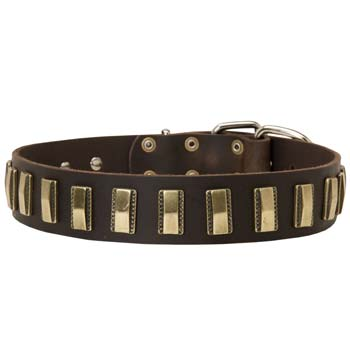 Fashion Dog Collar for Large Dogs like Cane Corso