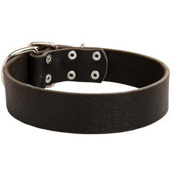 Classic Wide Dog Collar