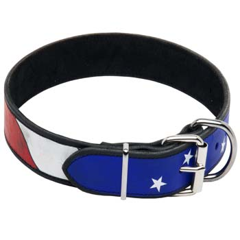 American pride painted leather collar