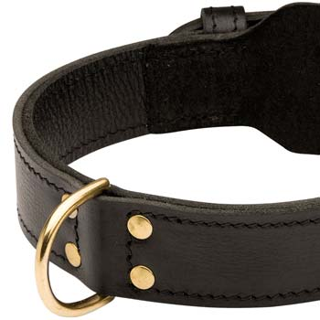 Handmade leather dog collar for various dog activities
