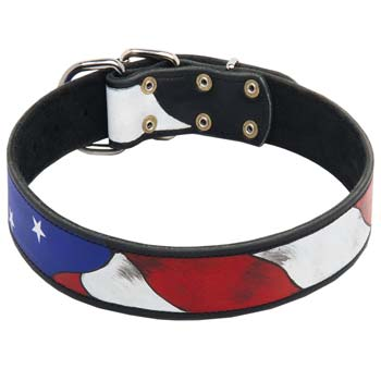 Stylish painted leather collar