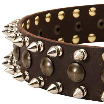 Decorated leather spiked collar for Cane Corso