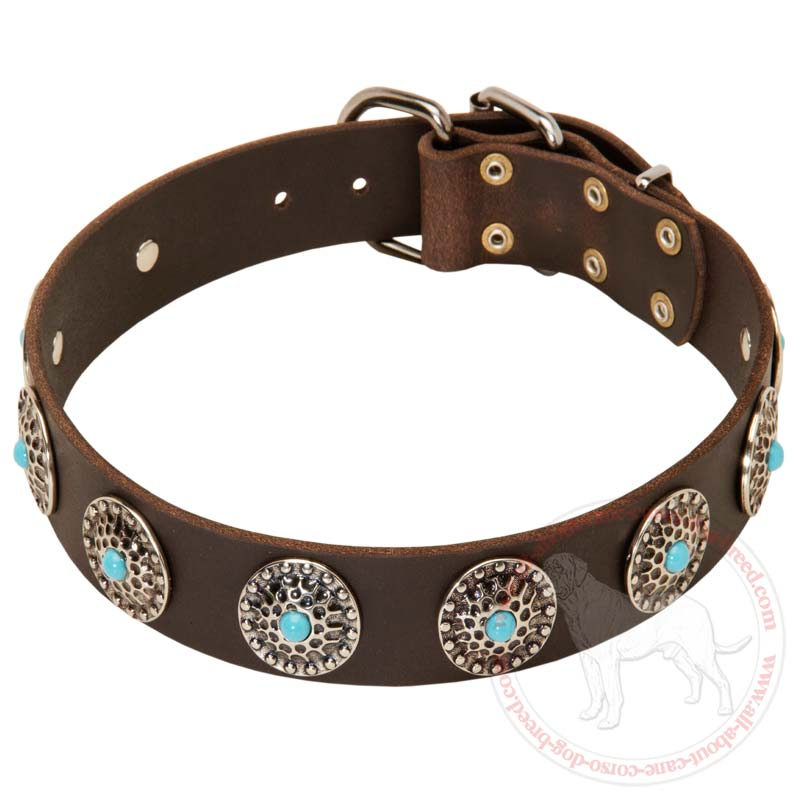 Buy Wide Leather Cane Corso Collar | Blue Stones | Walking