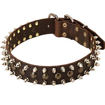 Stylish Cane Corso leather spiked collar