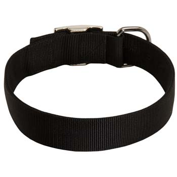 Everyday reliable nylon collar for Mastifflike dogs
