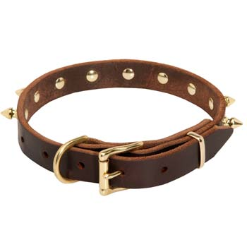 Leather collar with buckle style closure