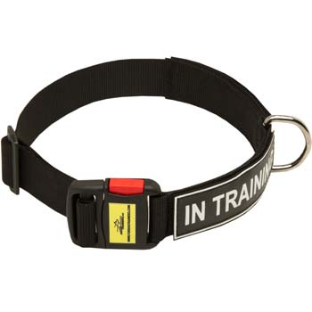 Strong Nylon collar for working dogs