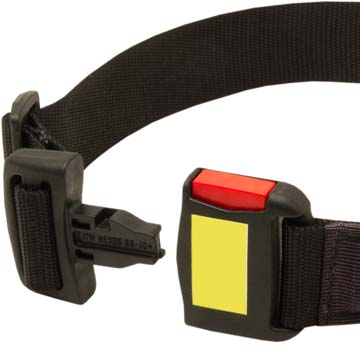 Training Nylon canine collar for Cane Corso with quick release buckle
