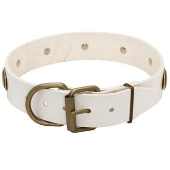 Leather dog collar white with easy adjustable buckle