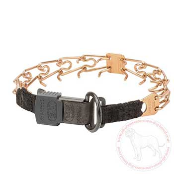 Cane Corso pinc collar with click lock system