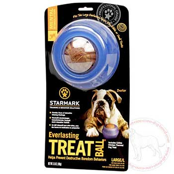 Cane Corso treat ball prevents boredom behaviour