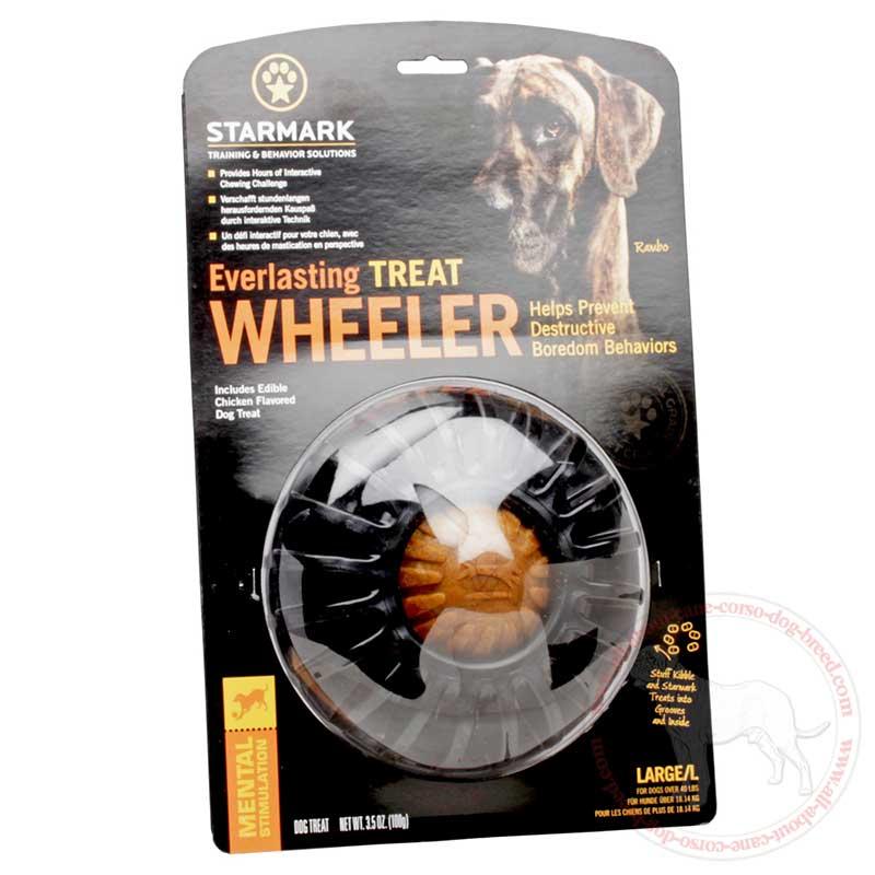 Yummy Tire Cane Corso Treat Holder Large Pet