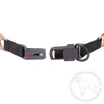 Click lock buckle of pinch collar fof Cane Corso
