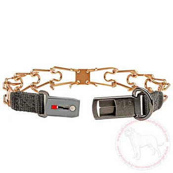 Easy-to-put-on dog pinch collar for Cane Corso