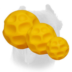 All sizes of tetraflex dog toys