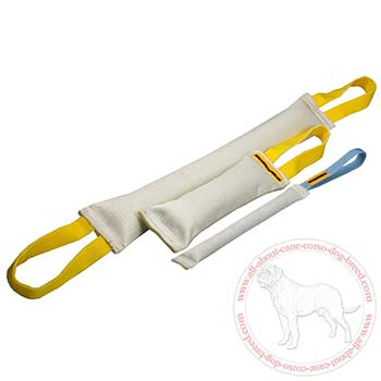 Fire hose dog bite tugs - 3 durable training items