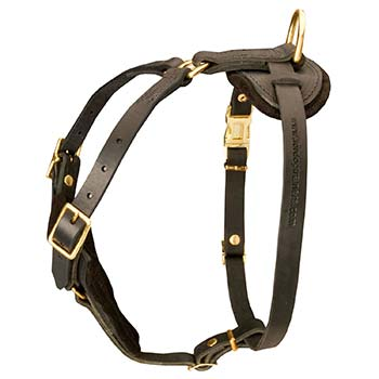 Leather Dog Harness with Padded Chest Plate