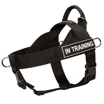 Control easy handling nylon dog harness