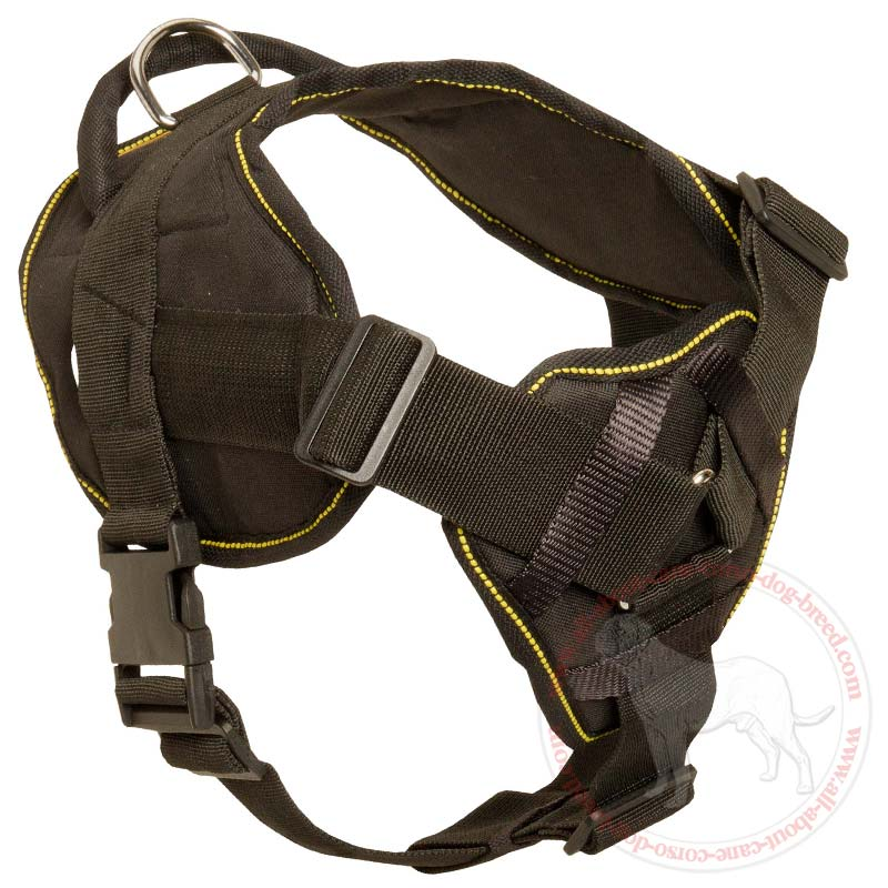 Dog Harness Small Breed
