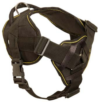 Cane Corso nylon dog harness for pulling