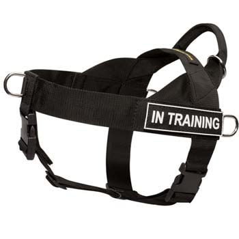 Easy to put-on and take-off nylon strongest harness